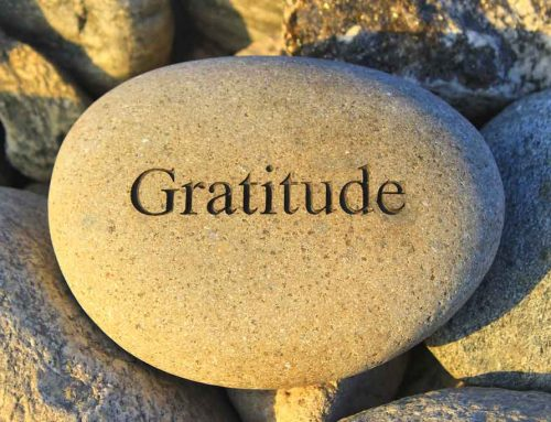 The Magic of Gratitude